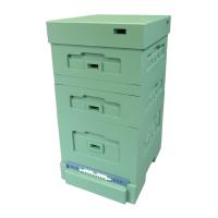 Вулик пінополістерол Дадан на 10 рамок Lyson з гігієнічним дном фарбований (повністю зелений)
